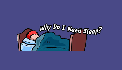 How and why do we sleep?